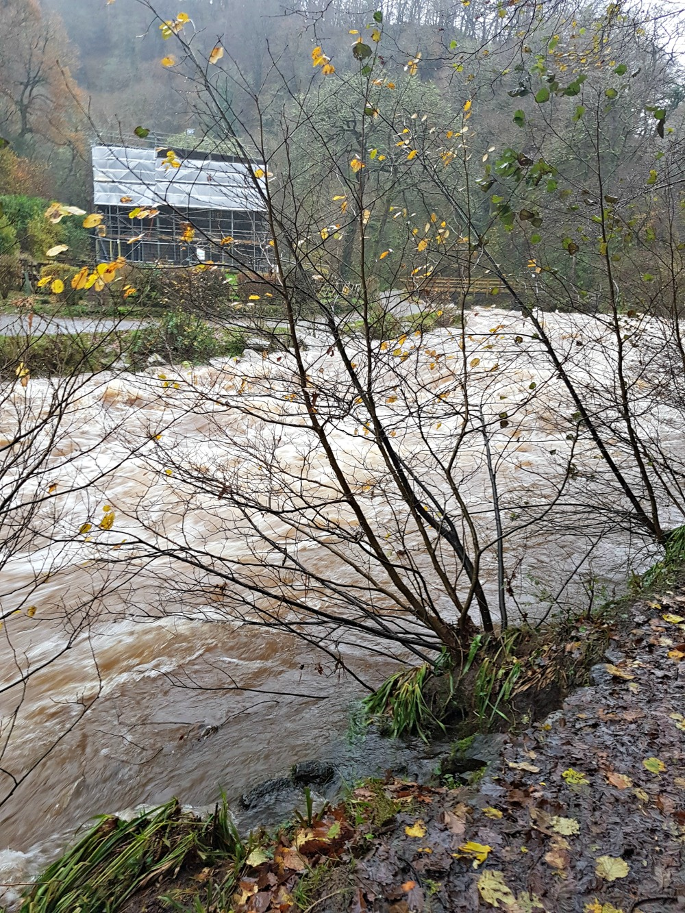 River Rising at Watersmeet
